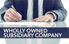 How to Establish a Wholly Owned Subsidiary in India